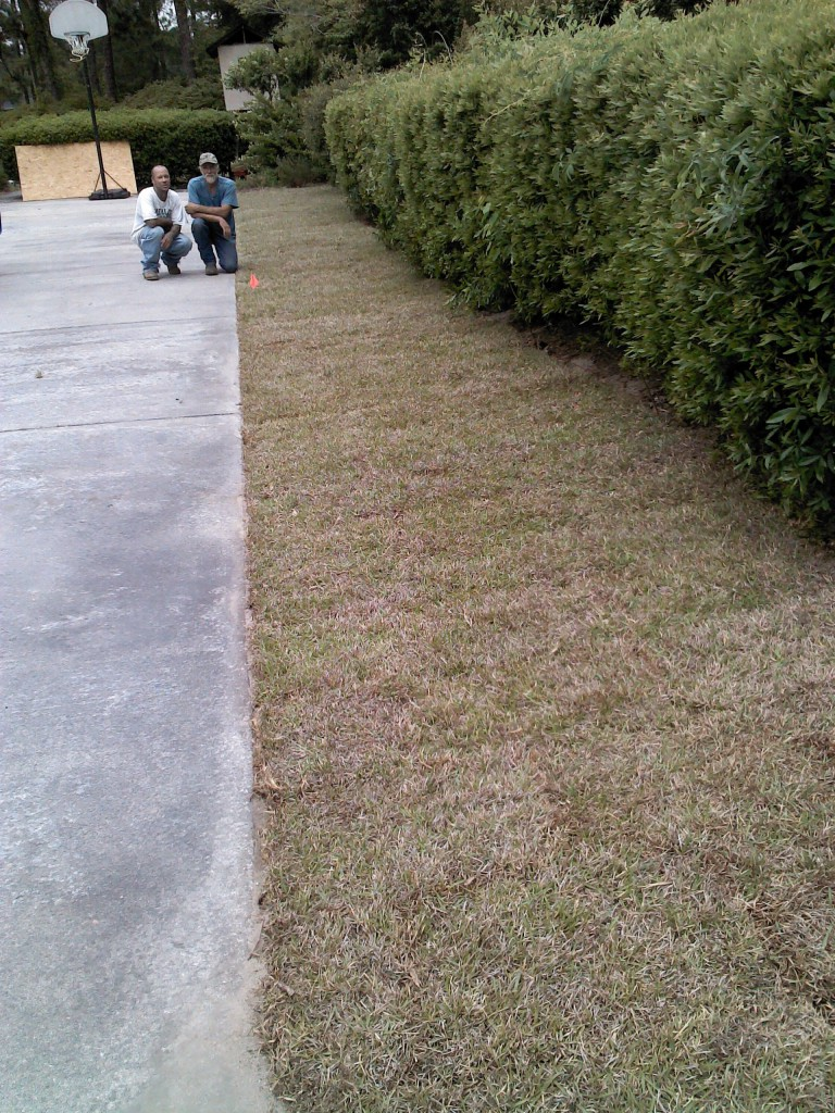 Roots Gallery Roots Lawn Care Llc Is A Lawn Care Company