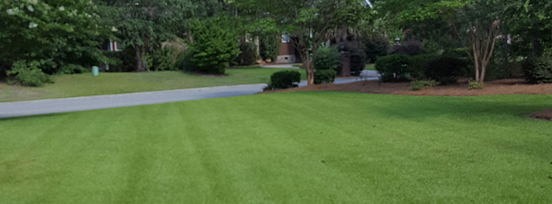 Roots Lawn Care Llc Is A Lawn Care Company Landscape